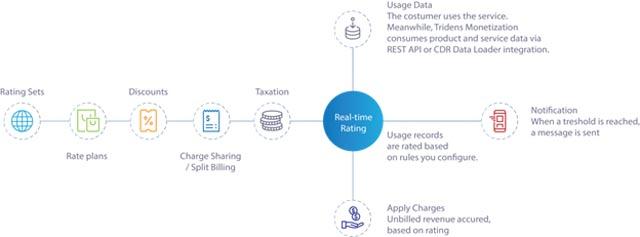 Usage-based revenue model
